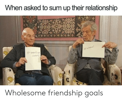 Friendship Goals: When asked to sum up their relationship  #ARENT NE  Wholesome friendship goals