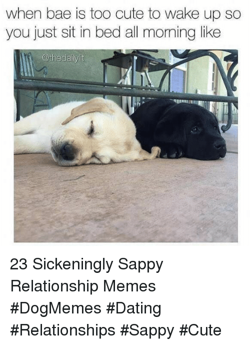 Bae, Cute, and Dating: when bae is too cute to wake up so  you just sit in bed all moming like  @thedailylit 23 Sickeningly Sappy Relationship Memes #DogMemes #Dating #Relationships #Sappy #Cute