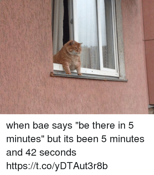 """Bae, Girl Memes, and Been: when bae says """"be there in 5 minutes"""" but its been 5 minutes and 42 seconds https://t.co/yDTAut3r8b"""