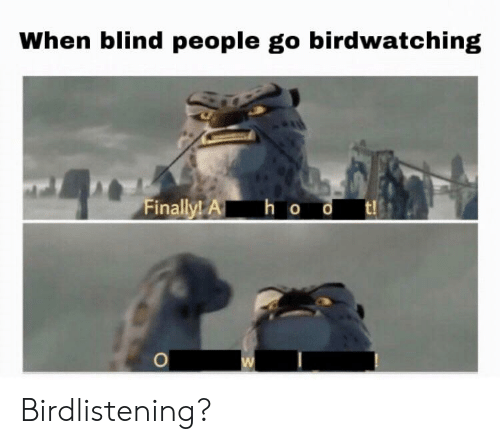 Dank Memes, People, and Finally: When blind people go birdwatching  Finally! A h o Birdlistening?