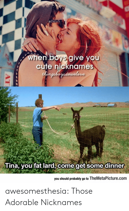 themetapicture: when boys give you  cute nicknames  Chenguberdawelone  Tina, you fat lard, come getsome dinner  you should probably go to TheMetaPicture.com  AT awesomesthesia:  Those Adorable Nicknames