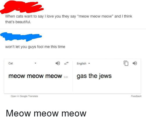 """Beautiful, Cats, and Google: When cats want to say I love you they say """"meow meow meow"""" and I think  that's beautiful.  won't let you guys fool me this time  English  O 4D  Cat  meow meow meoWgas the jews  Edit  Open in Google Translate  Feedback <p>Meow meow meow</p>"""