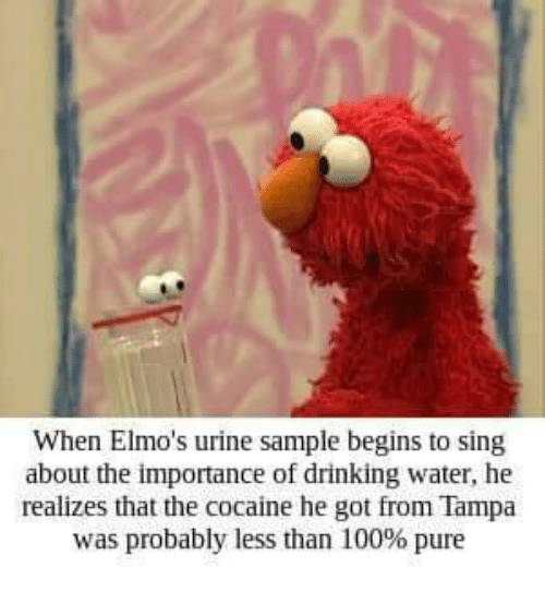 Anaconda, Drinking, and Cocaine: When Elmo's urine sample begins to sing  about the importance of drinking water, he  realizes that the cocaine he got from Tampa  was probably less than 100% pure