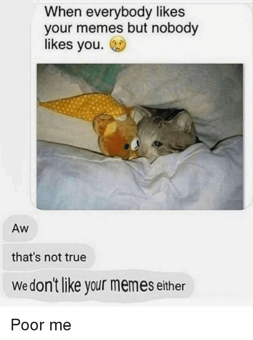 Memes, True, and You: When everybody likes  your memes but nobody  likes you.  Aw  that's not true  Wedon't like your memes either Poor me