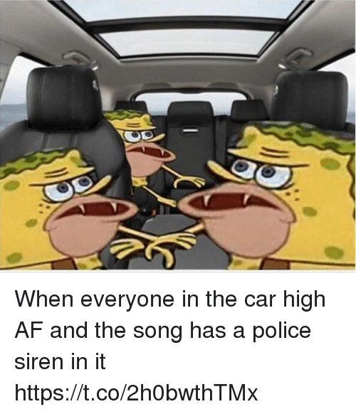 Af, Funny, and Police: When everyone in the car high AF and the song has a police siren in it https://t.co/2h0bwthTMx