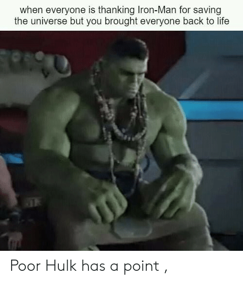 Iron Man, Life, and Hulk: when everyone is thanking Iron-Man for saving  the universe but you brought everyone back to life Poor Hulk has a point ,