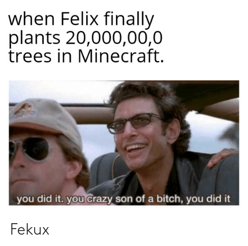 Bitch, Crazy, and Minecraft: when Felix finally  plants 20,000,00,0  trees in Minecraft.  you did it. you crazy son of a bitch, you did it Fekux