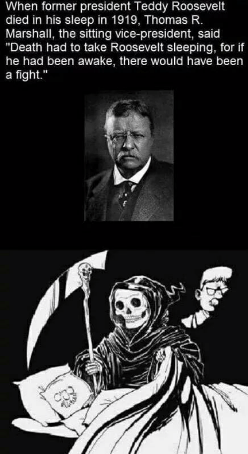 "Teddy: When former president Teddy Roosevelt  died in his sleep in 1919, Thomas R.  Marshall, the sitting vice-president, said  ""Death had to take Roosevelt sleeping, for if  he had been awake, there would have been  a fight."""