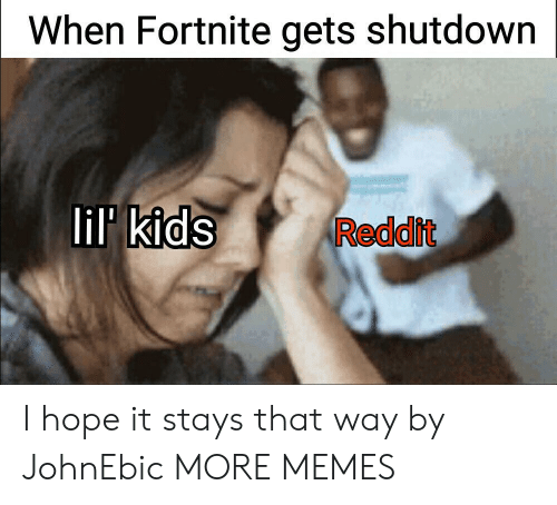 Dank, Memes, and Reddit: When Fortnite gets shutdown  lil kids  Reddit I hope it stays that way by JohnEbic MORE MEMES