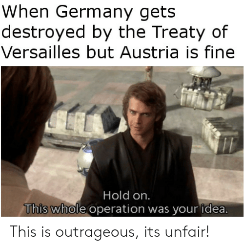 versailles: When Germany gets  destroyed by the Treaty of  Versailles but Austria is fine  Hold on.  This whole operation was your idea This is outrageous, its unfair!