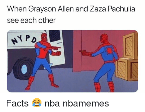 Basketball, Facts, and Nba: When Grayson Allen and Zaza Pachulia  see each other Facts 😂 nba nbamemes