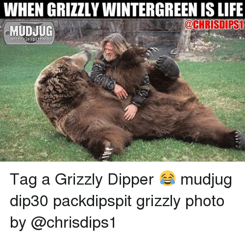 Life, Memes, and 🤖: WHEN GRIZZLY WINTERGREEN IS LIFE  @CHRISDIPS  MUDJUG  portable spittoons Tag a Grizzly Dipper 😂 mudjug dip30 packdipspit grizzly photo by @chrisdips1