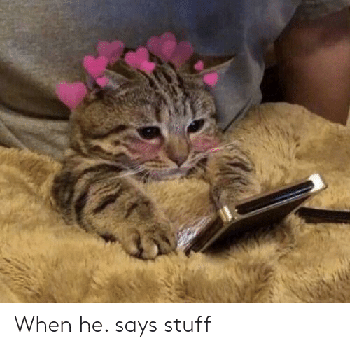 Stuff, When, and When He: When he. says stuff