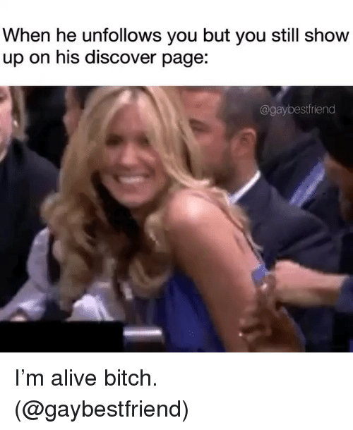 Alive, Bitch, and Discover: When he unfollows you but you still show  up on his discover page:  @gaybestfriend I'm alive bitch. (@gaybestfriend)
