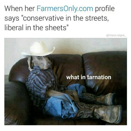 Streets Conservative And Dank Memes When Her Farmers Only Com Profile Says Conservative In The Streets Liberal In The Sheets Chaos Reigns What In