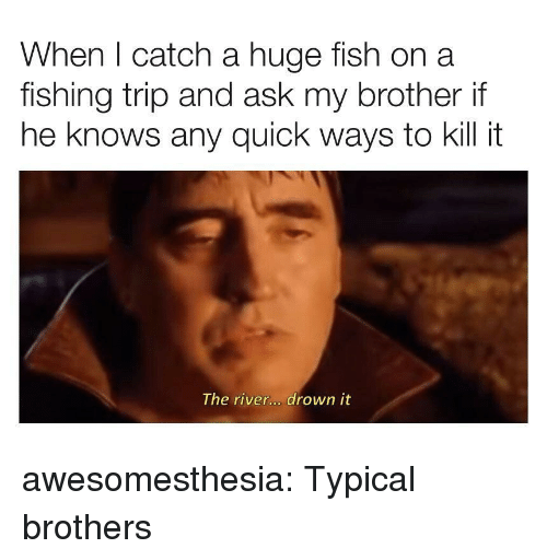 Tumblr, Blog, and Fish: When I catch a huge fish on a  fishing trip and ask my brother if  he knows any quick ways to kill it  The river... drown it awesomesthesia:  Typical brothers