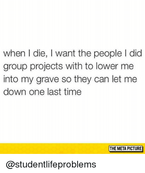 Let Me Down: when I die, I want the people I did  group projects with to lower me  into my grave so they can let me  down one last time  THE META PICTURE @studentlifeproblems
