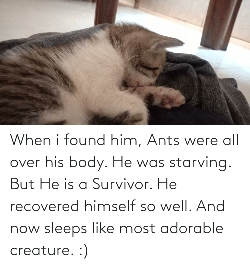 Found Him: When i found him, Ants were all over his body. He was starving. But He is a Survivor. He recovered himself so well. And now sleeps like most adorable creature. :)