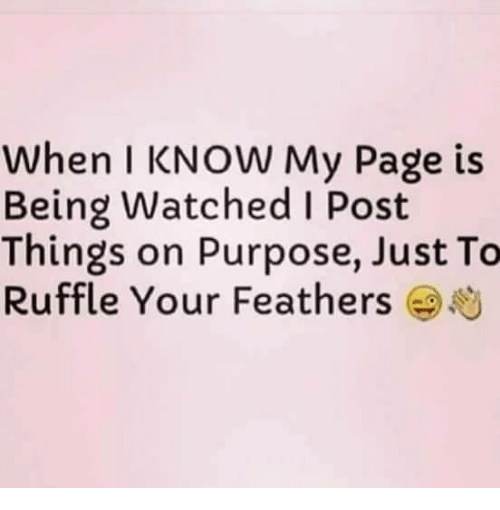 ruffles: When I KNOW My Page is  Being Watched I Post  Things on Purpose, Just To  Ruffle Your Feathers