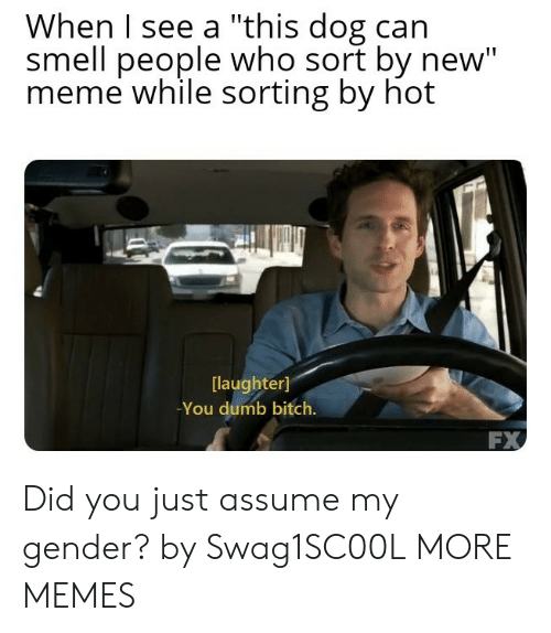 """Bitch, Dank, and Dumb: When I see a """"this dog can  smell people who sort by new""""  meme while sorting by hot  laughter]  -You dumb bitch.  FX Did you just assume my gender? by Swag1SC00L MORE MEMES"""