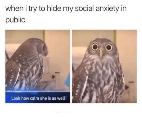 Anxiety, Humans of Tumblr, and How: when i try to hide my social anxiety in  public  Look how calm she is as well!