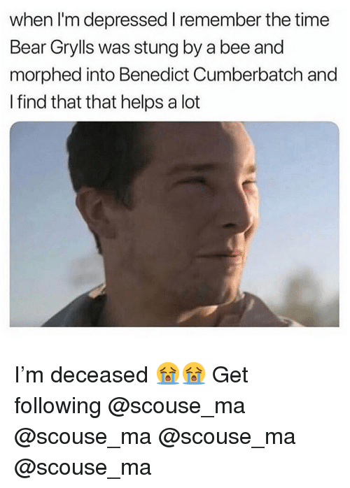 Memes, Bear, and Time: when I'm depressed I remember the time  Bear Grylls was stung by a bee and  morphed into Benedict Cumberbatch and  I find that that helps a lot I'm deceased 😭😭 Get following @scouse_ma @scouse_ma @scouse_ma @scouse_ma