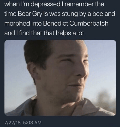 When Im: when I'm depressed I remember the  time Bear Grylls was stung by a bee and  morphed into Benedict Cumberbatch  and I find that that helps a lot  7/22/18, 5:03 AM