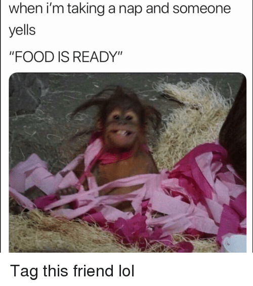 "Food, Funny, and Lol: when i'm taking a nap and someone  yells  ""FOOD IS READY"" Tag this friend lol"