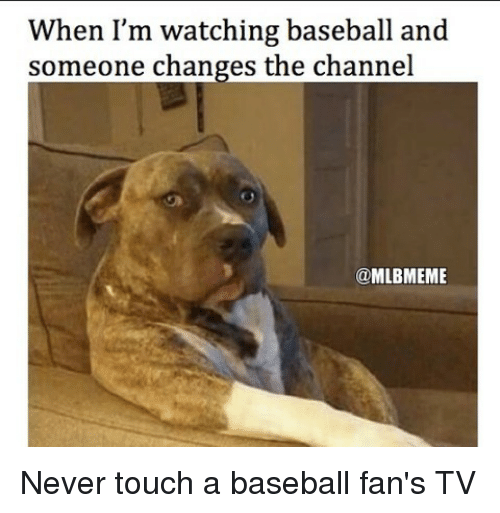 Baseballisms: When I'm watching baseball and  someone changes the channel  @MLBMEME Never touch a baseball fan's TV