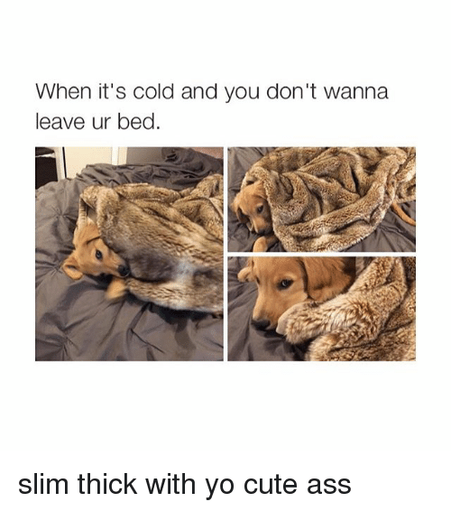 Slim Thick: When it's cold and you don't wanna  leave ur bed. slim thick with yo cute ass