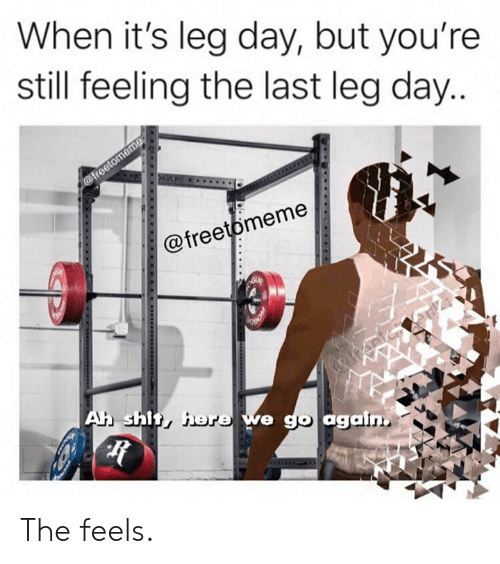 Leg Day: When it's leg day, but you're  still feeling the last leg day...  @freetomeme  GUE  @freetomeme  Ah shit, here we go again The feels.