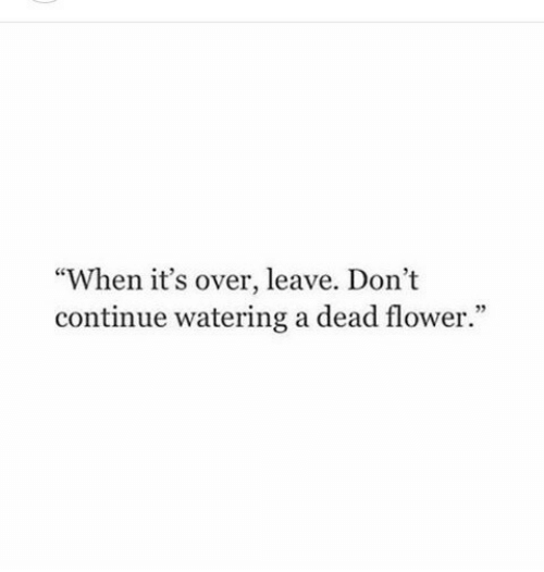 "Flower, Dead, and Continue: ""When it's over, leave. Dont  continue watering a dead flower."""