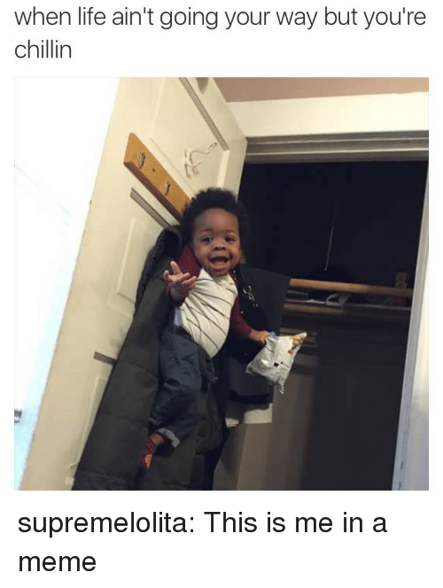Life, Meme, and Tumblr: when life ain't going your way but you're  chillin supremelolita: This is me in a meme