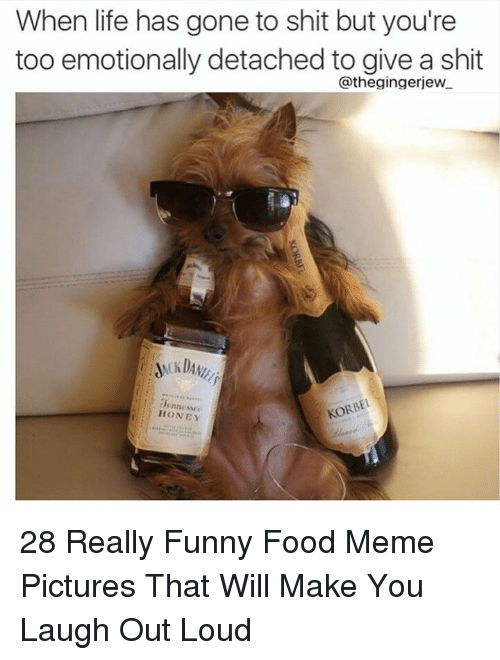 meme pictures: When life has gone to shit but you're  too emotionally detached to give a shit  @thegingerjew  0ennesse  HONEY 28 Really Funny Food Meme Pictures That Will Make You Laugh Out Loud