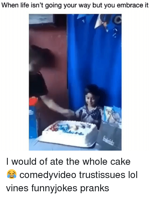 Life, Lol, and Memes: When life isn't going your way but you embrace it I would of ate the whole cake 😂 comedyvideo trustissues lol vines funnyjokes pranks