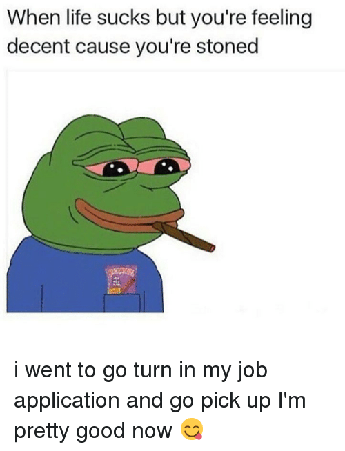 Job Application: When life sucks but you're feeling  decent cause you're stoned i went to go turn in my job application and go pick up I'm pretty good now 😋