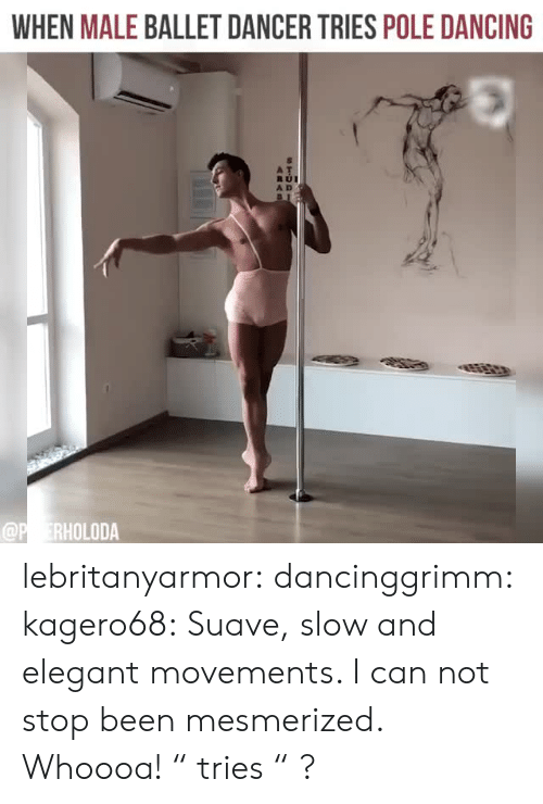 """mesmerized: WHEN MALE BALLET DANCER TRIES POLE DANCING  A D lebritanyarmor: dancinggrimm:  kagero68: Suave, slow and elegant movements. I can not stop been mesmerized. Whoooa!   """" tries """" ?"""