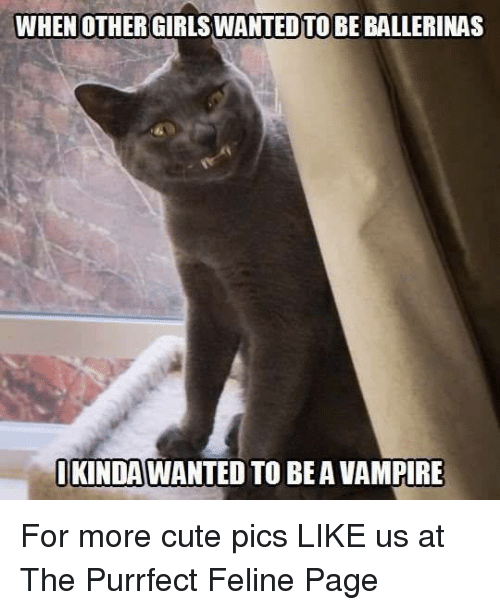 Vampirism: WHEN OTHER GIRLSWANTED TO BE BALLERINAS  IKINDAWANTED TO BE A VAMPIRE For more cute pics LIKE us at The Purrfect Feline Page
