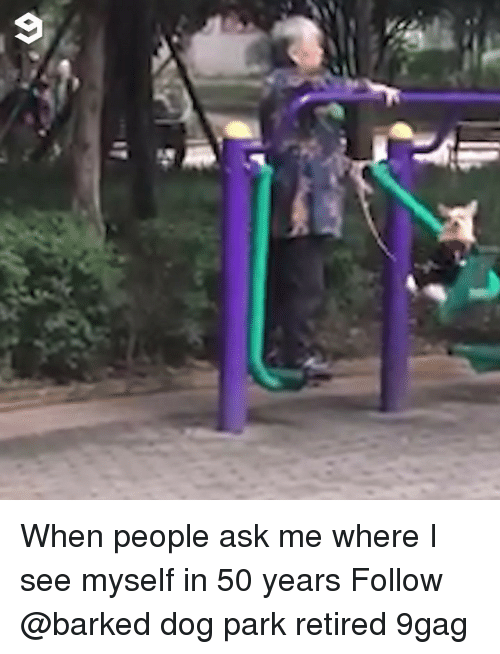 9gag, Memes, and 🤖: When people ask me where I see myself in 50 years Follow @barked dog park retired 9gag