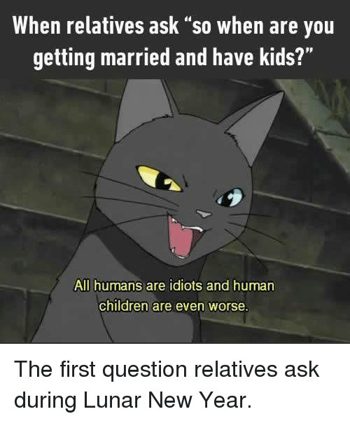 "Children, Dank, and New Year's: When relatives ask ""so when are you  getting married and have kids?""  All humans are idiots and human  children are even worse. The first question relatives ask during Lunar New Year."
