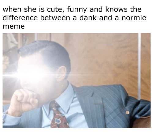 Cute, Dank, and Funny: when she is cute, funny and knows the  difference between a dank and a normie  meme