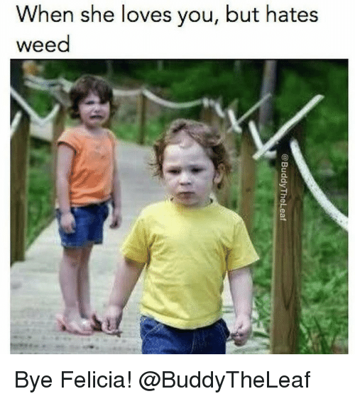 bye felicia: When she loves you, but hates  weed  亏 u-  @BuddyTheLeaf Bye Felicia! @BuddyTheLeaf