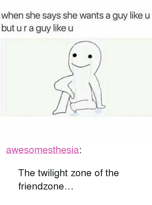 "Friendzone, Tumblr, and Blog: when she says she wants a guy like u  but u r a guy like u <p><a href=""http://awesomesthesia.tumblr.com/post/173548118162/the-twilight-zone-of-the-friendzone"" class=""tumblr_blog"">awesomesthesia</a>:</p>  <blockquote><p>The twilight zone of the friendzone…</p></blockquote>"