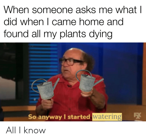 Asks: When someone asks me what I  did when I came home and  found all my plants dying  54  So anyway I started watering All I know