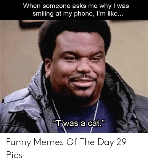 """Funny, Memes, and Phone: When someone asks me whyI was  smiling at my phone, I'm like...  """"Twas a cat. Funny Memes Of The Day 29 Pics"""