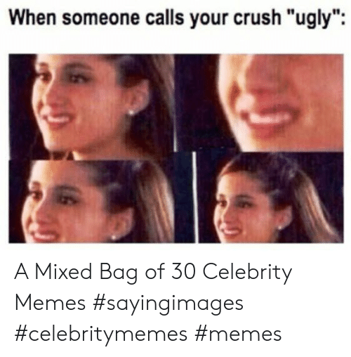 "Crush, Memes, and Ugly: When someone calls your crush ""ugly"" A Mixed Bag of 30 Celebrity Memes #sayingimages #celebritymemes #memes"