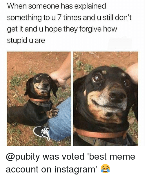 Instagram, Meme, and Memes: When someone has explained  something to u 7 times and u still don't  get it and u hope they forgive how  stupid u are @pubity was voted 'best meme account on instagram' 😂