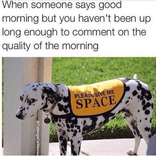 Give Me Space: When someone says good  morning but you haven't been up  long enough to comment on the  quality of the morning  PLEASE GIVE ME  SPACE  @CabbageCatMemes