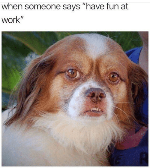 """Work, Fun, and Someone: when someone says """"have fun at  work"""""""