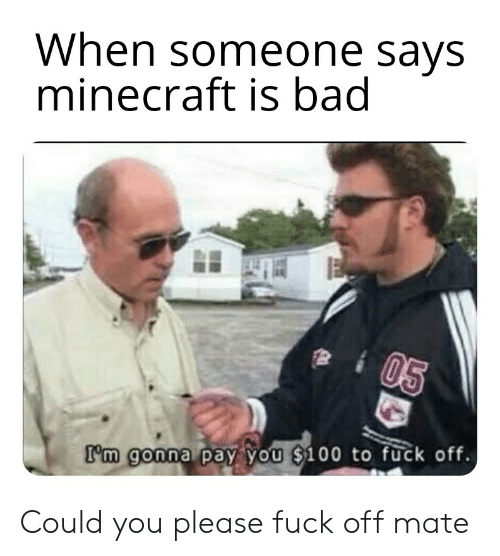 Bad, Minecraft, and Reddit: When someone says  minecraft is bad  05  I'm gonna pay you $100 to fuck off. Could you please fuck off mate